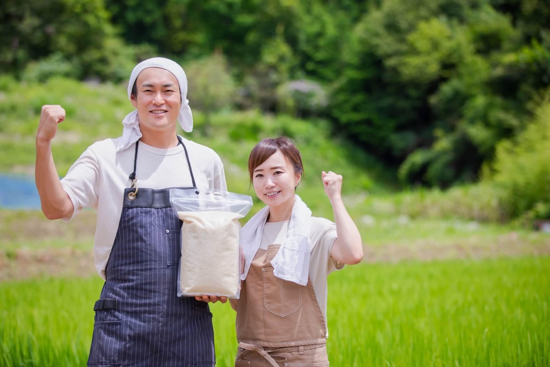 米作りの画像